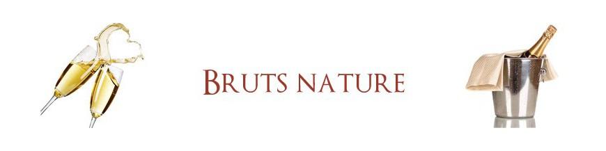 Bruts nature