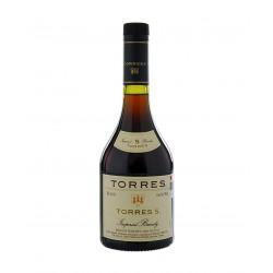 Brandy Torres 5